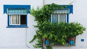 apartment-architectural-architectural-design-2932459